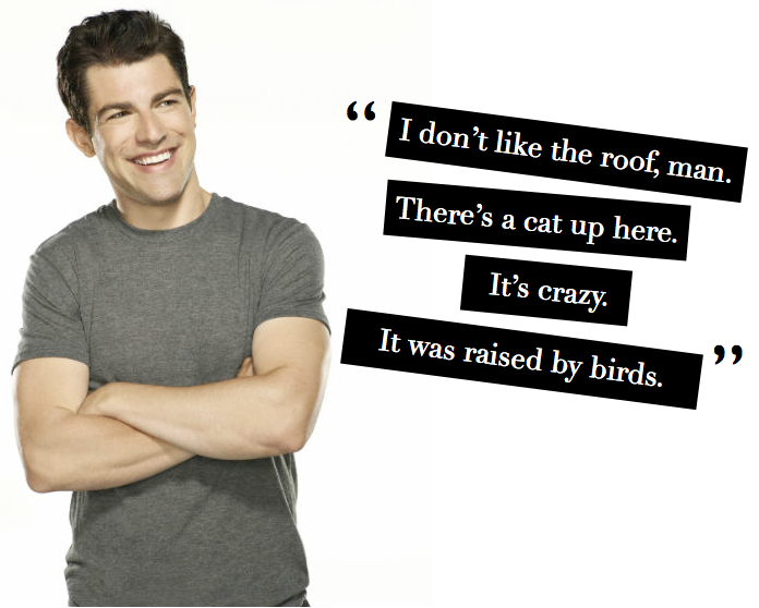 New Girl     a tv show like no otherNew Girl Quotes Schmidt