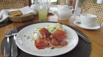 Breakfast of poached eggs and bacon